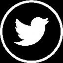 Twitter-Bird-128